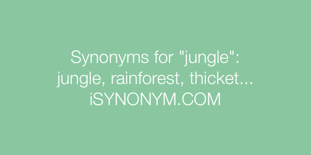 Synonyms jungle