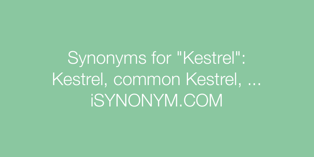 Synonyms Kestrel