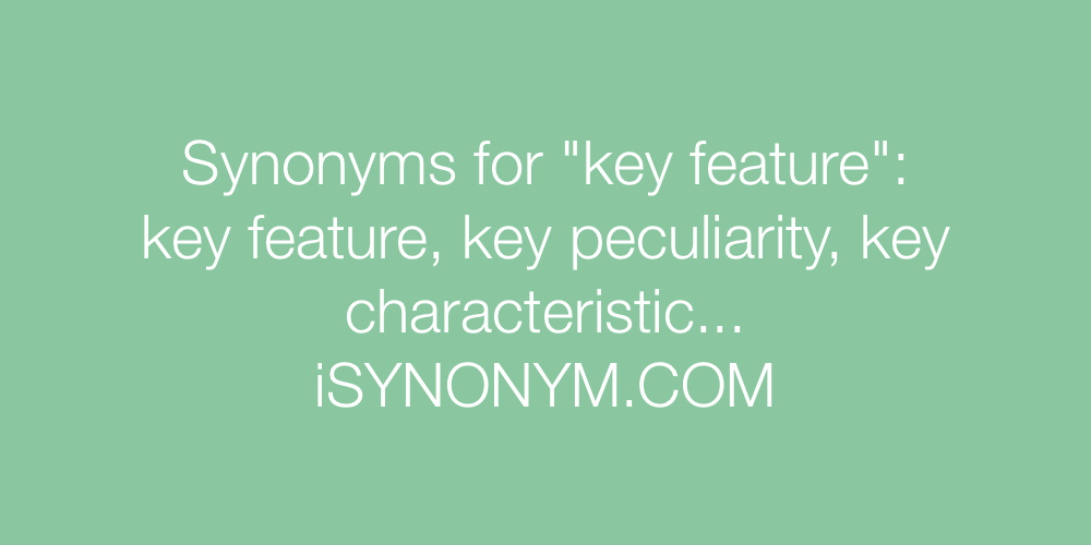 Synonyms key feature