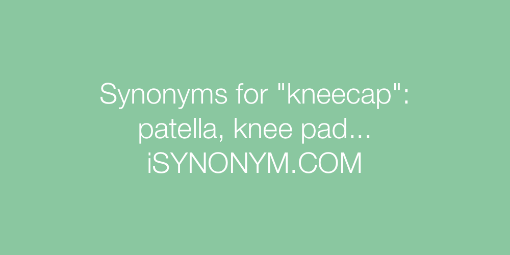Synonyms kneecap