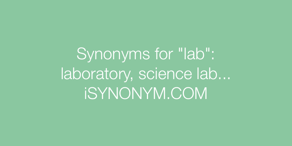 Synonyms lab