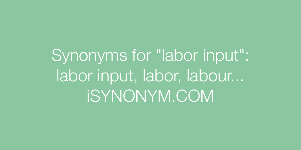 Synonyms labor input