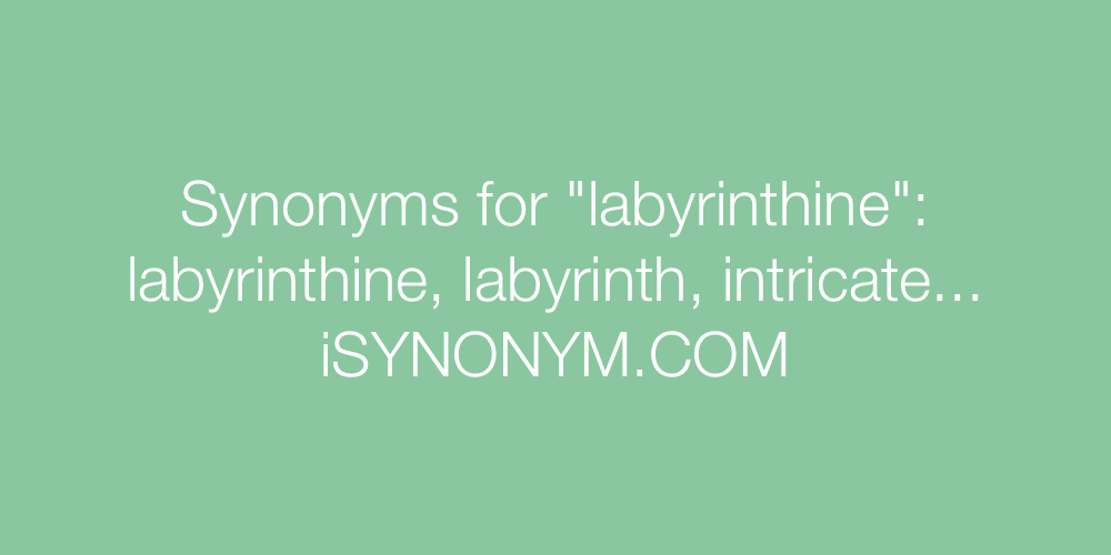 Synonyms labyrinthine