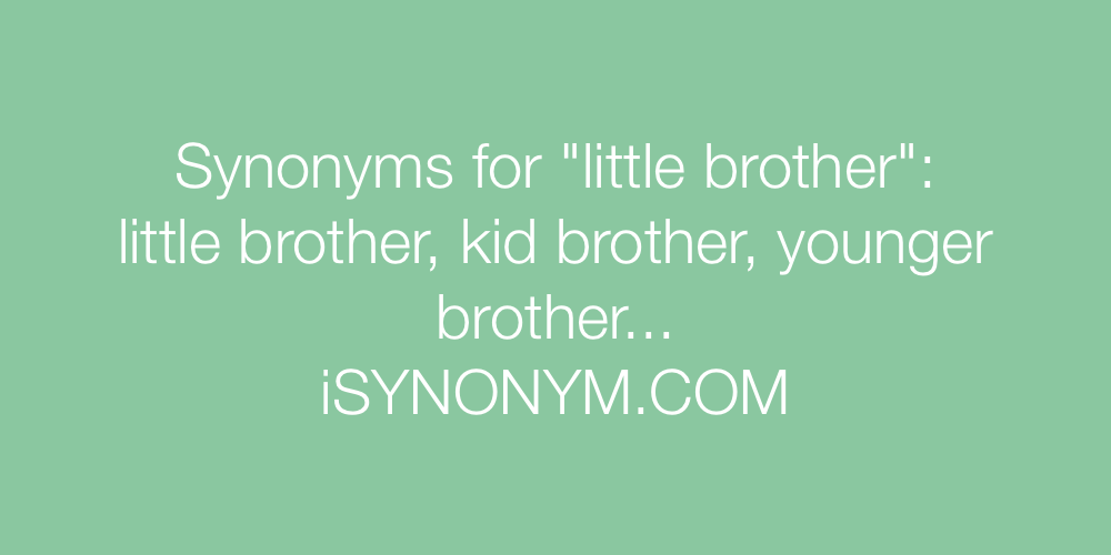 Synonyms little brother