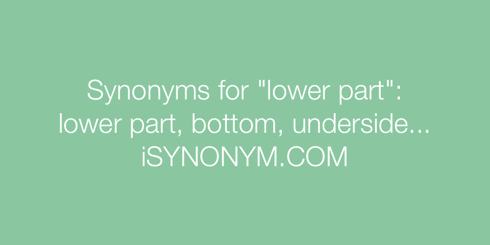 Synonyms lower part