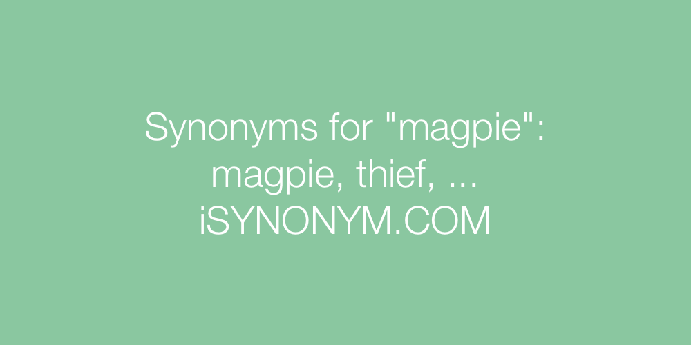 Synonyms magpie