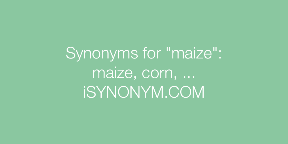 Synonyms maize