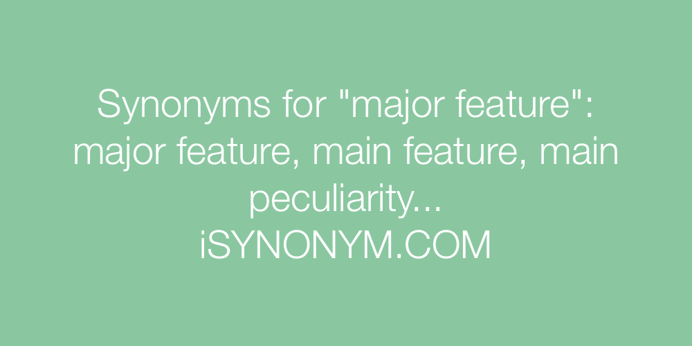 Synonyms major feature