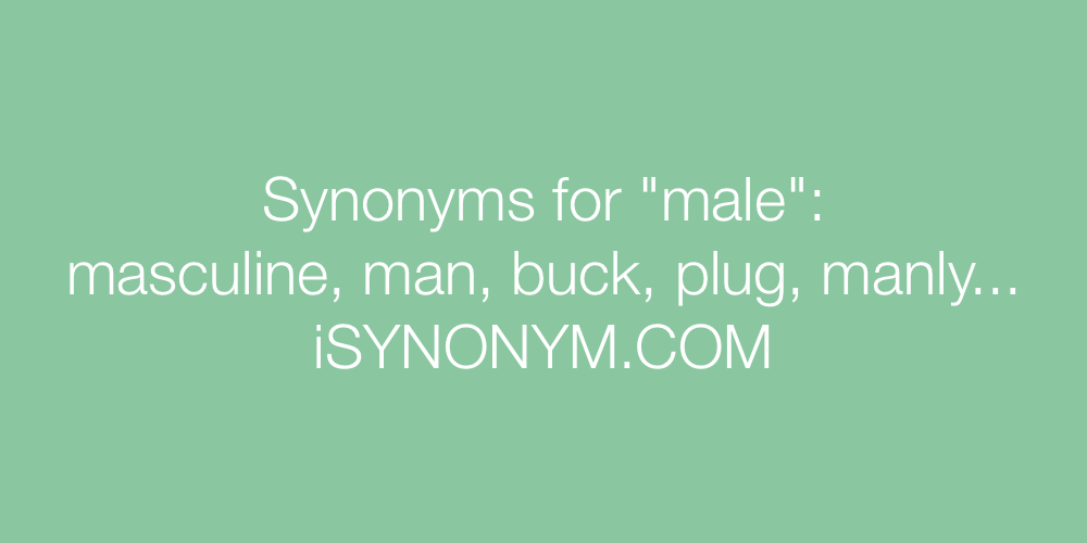 Synonyms male