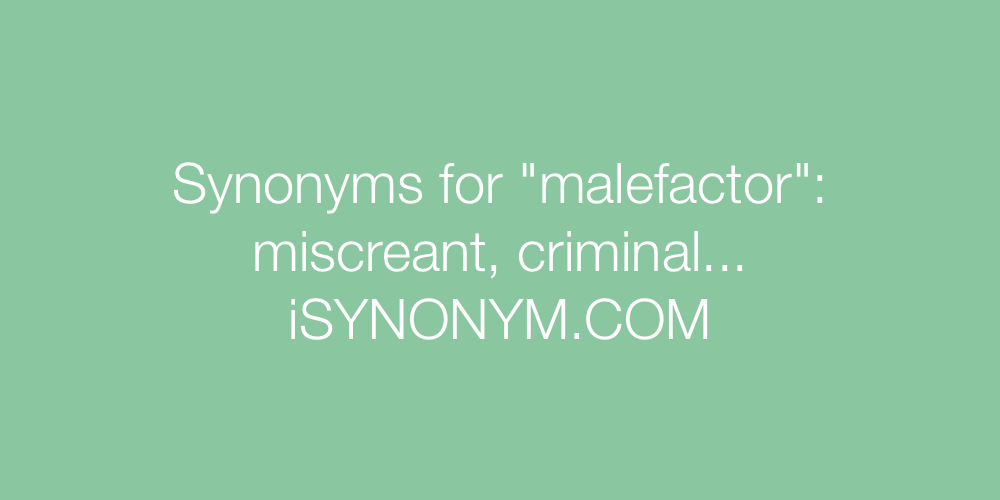 Synonyms malefactor