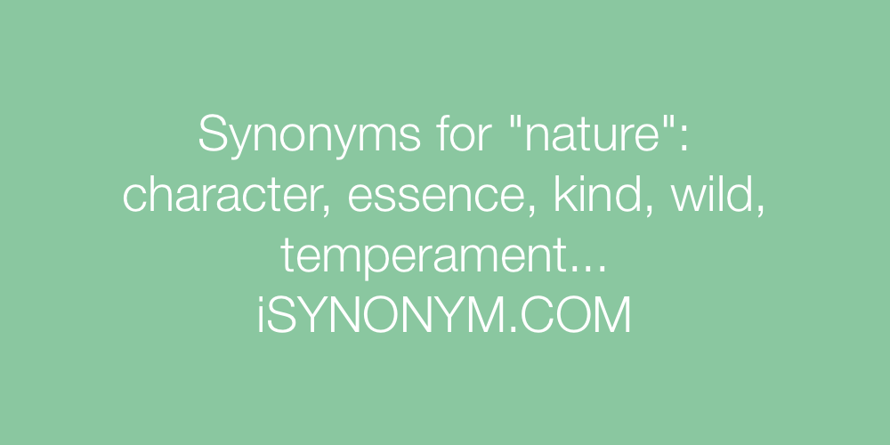 Synonyms nature