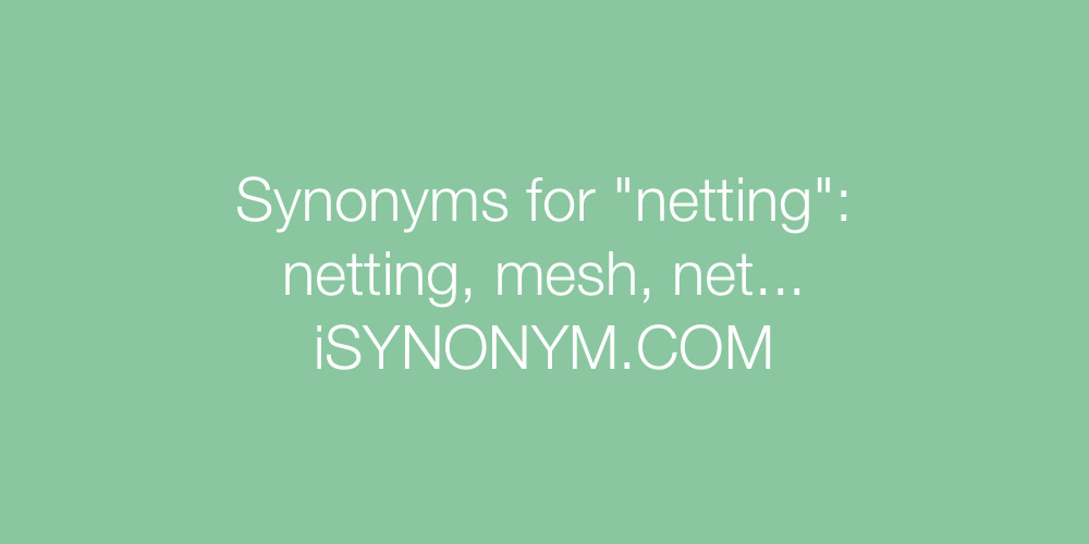 Synonyms netting