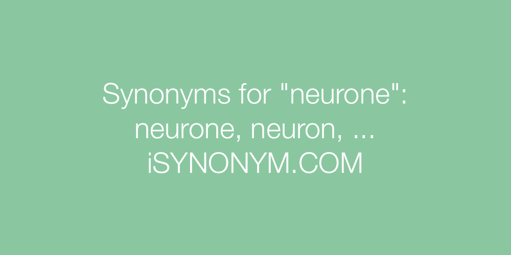 Synonyms neurone