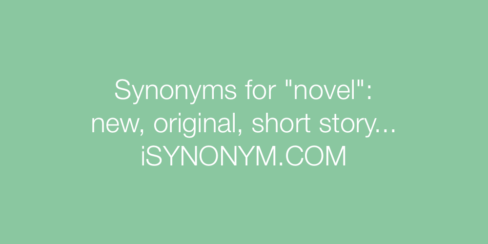 Synonyms novel