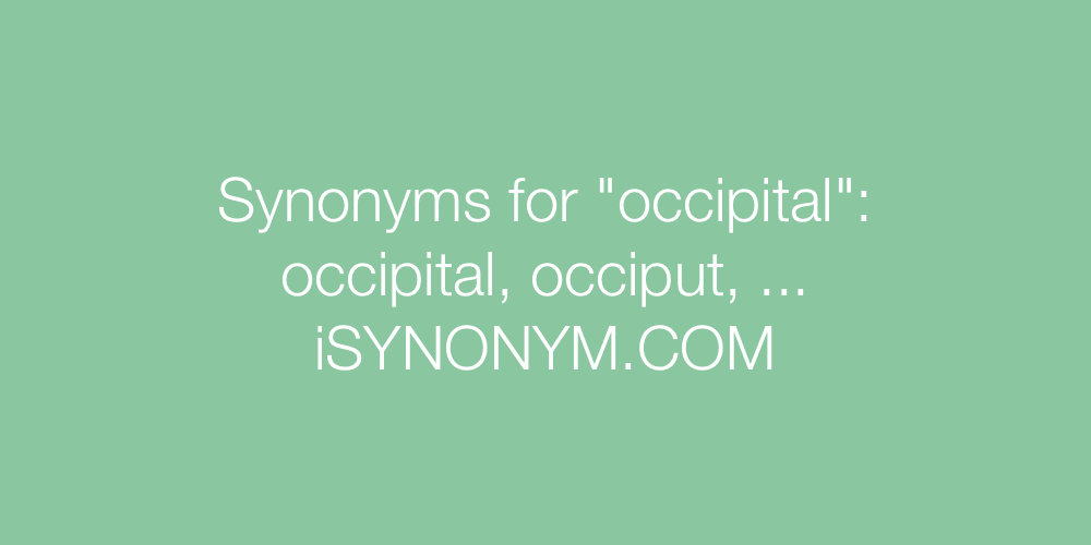 Synonyms occipital