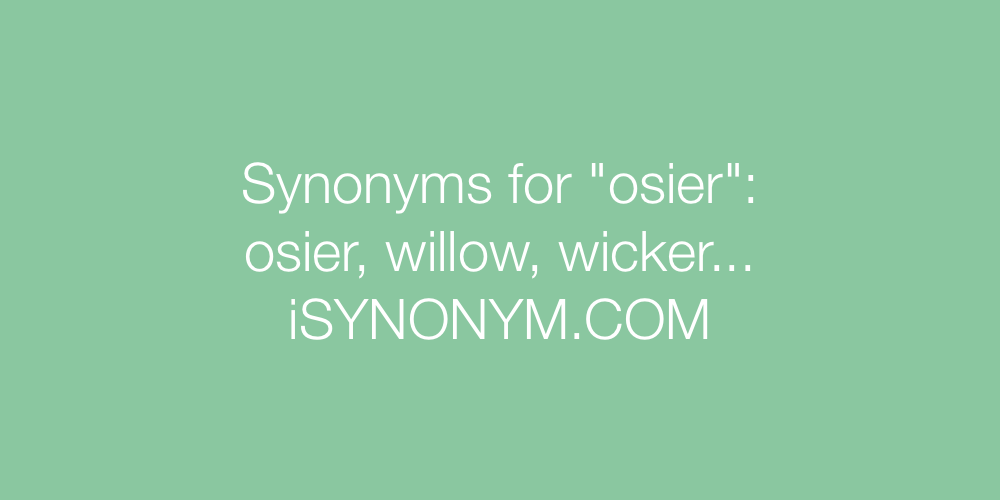 Synonyms osier