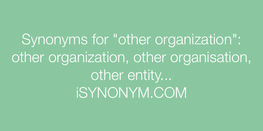 Synonyms other organization