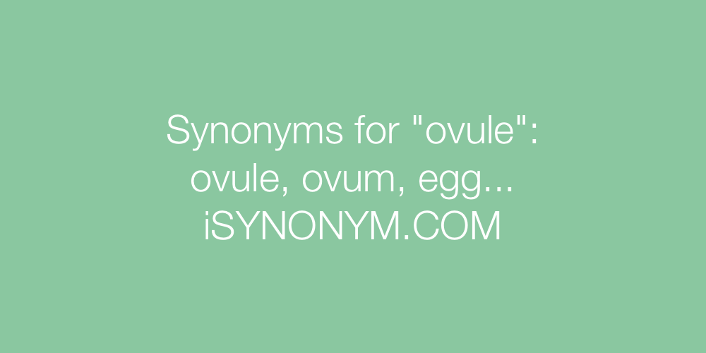 Synonyms ovule