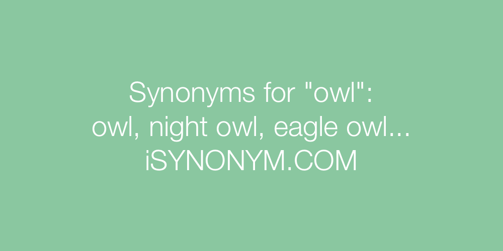 Synonyms owl