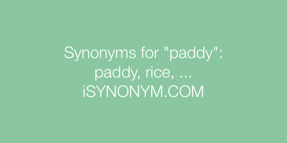 Synonyms paddy