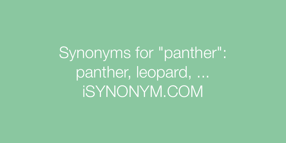 Synonyms panther