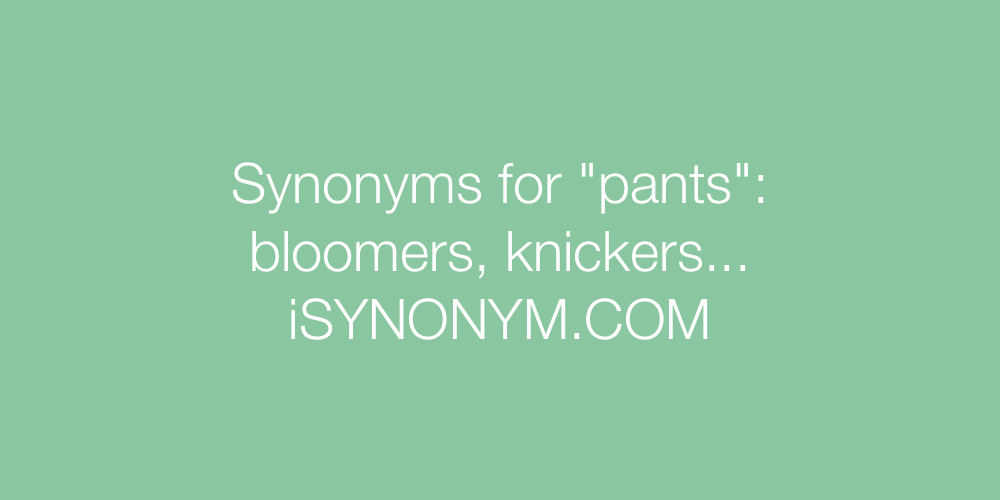 Synonyms pants