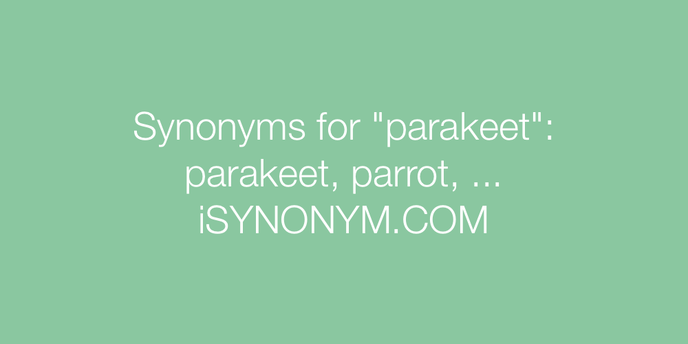 Synonyms parakeet