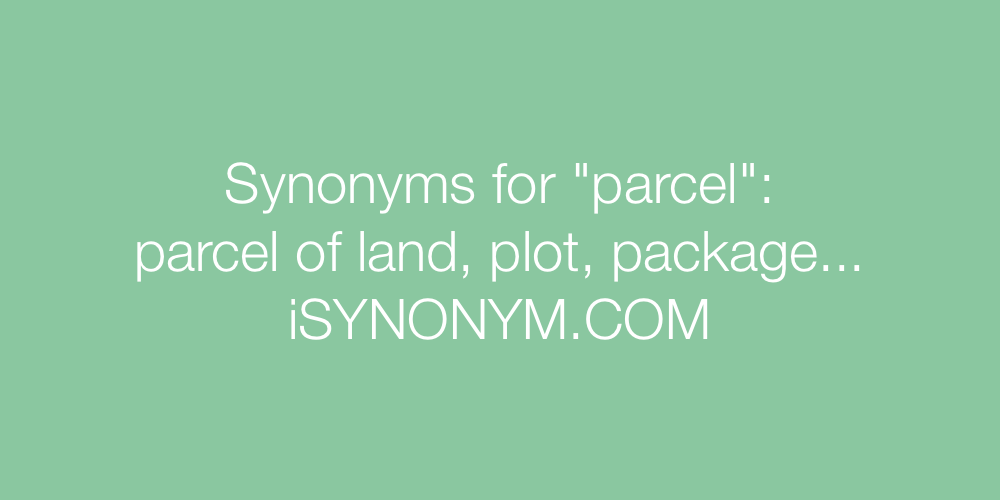 Synonyms parcel