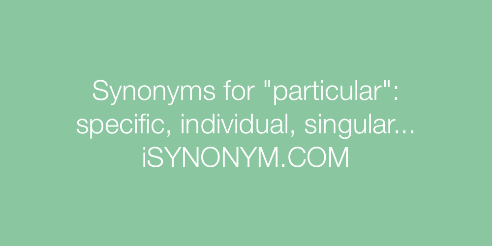 Synonyms particular