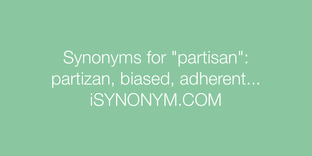 Synonyms partisan