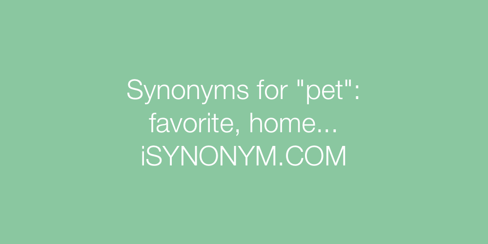 Synonyms pet