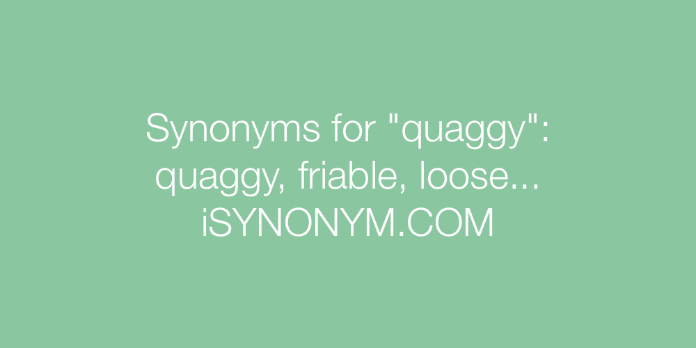 Synonyms quaggy