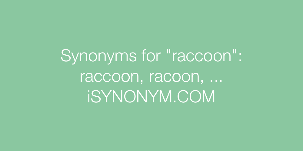 Synonyms raccoon