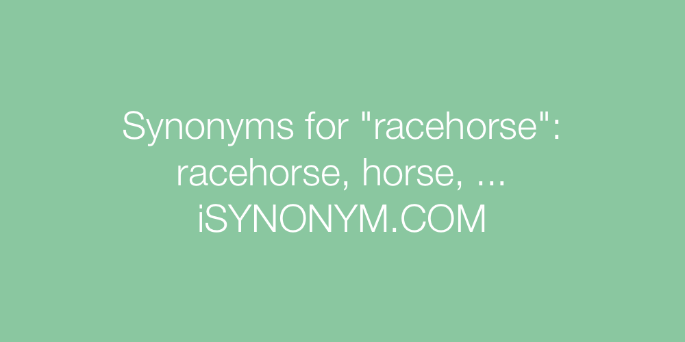 Synonyms racehorse
