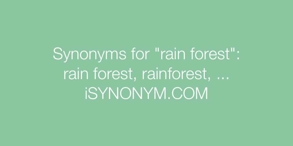 Synonyms rain forest