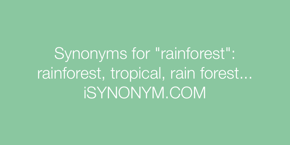 Synonyms rainforest