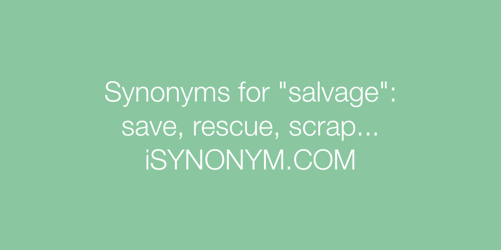 Synonyms salvage