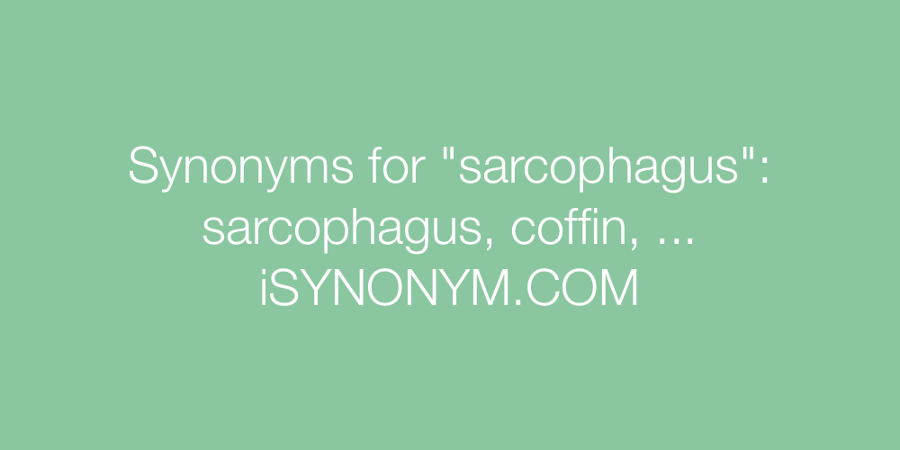 Synonyms sarcophagus