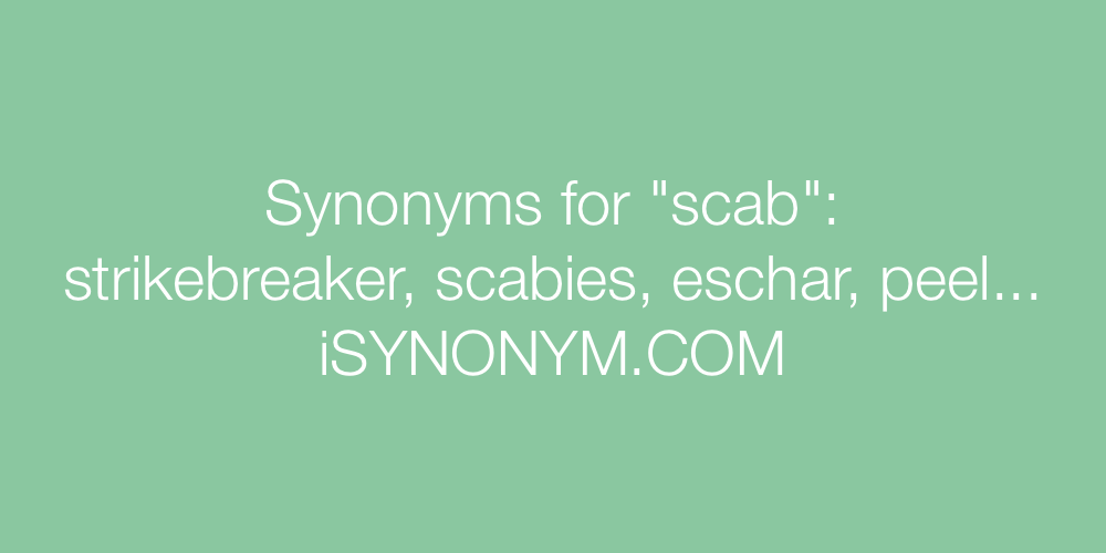 Synonyms scab