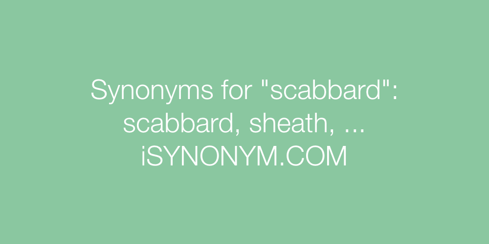 Synonyms scabbard
