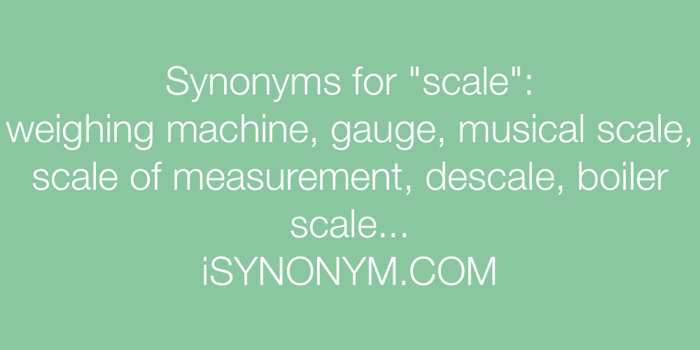 Synonyms scale