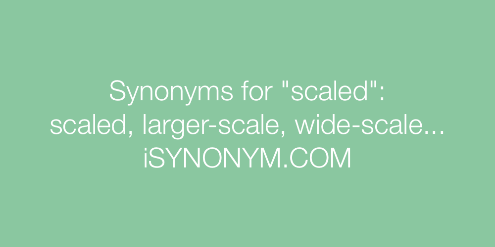 Synonyms scaled
