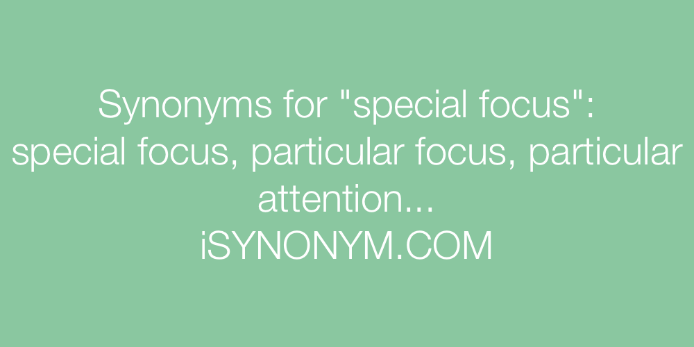Picture Synonyms Special Focus