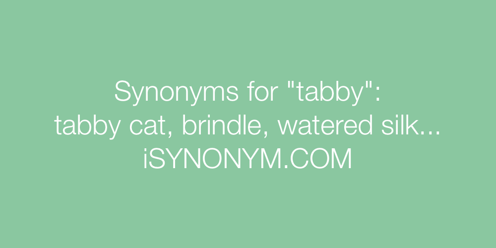 Synonyms tabby