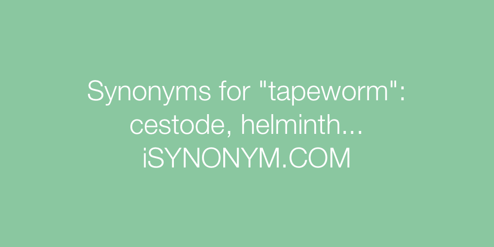Synonyms tapeworm