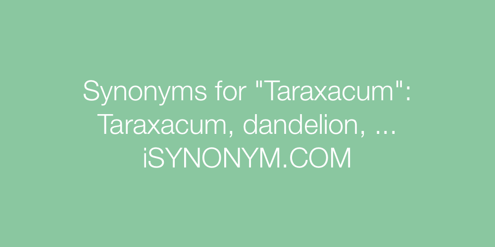 Synonyms Taraxacum