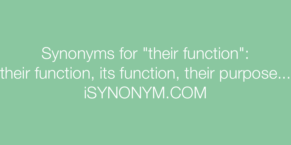 Synonyms their function