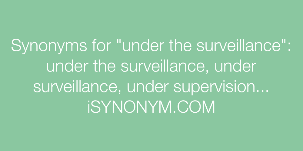 Synonyms under the surveillance