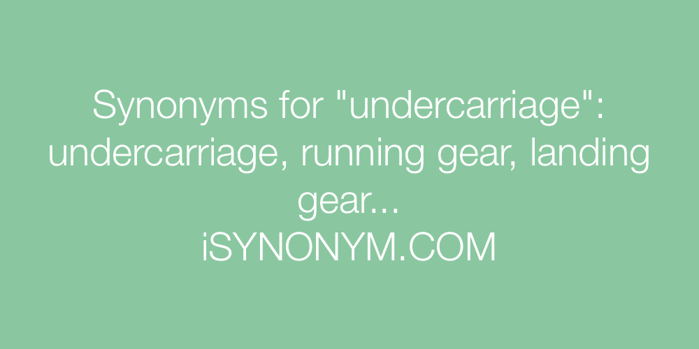 Synonyms undercarriage