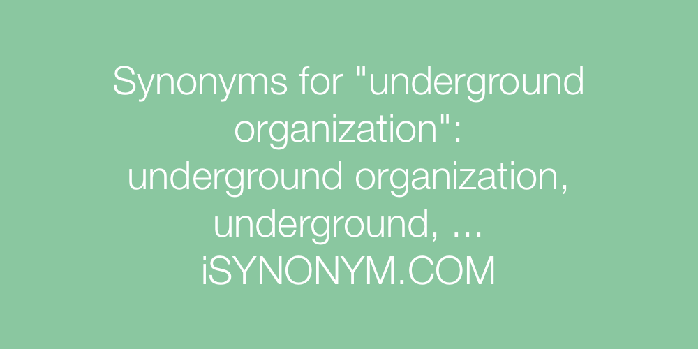 Synonyms underground organization